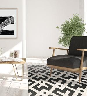 Carpet Genesis